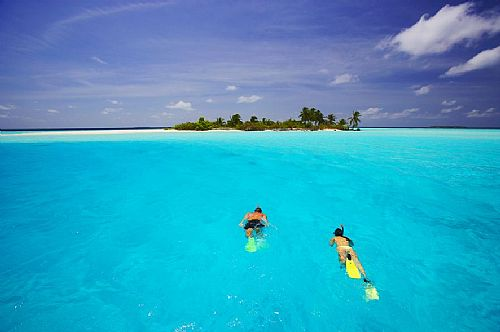 snorkeling beignners